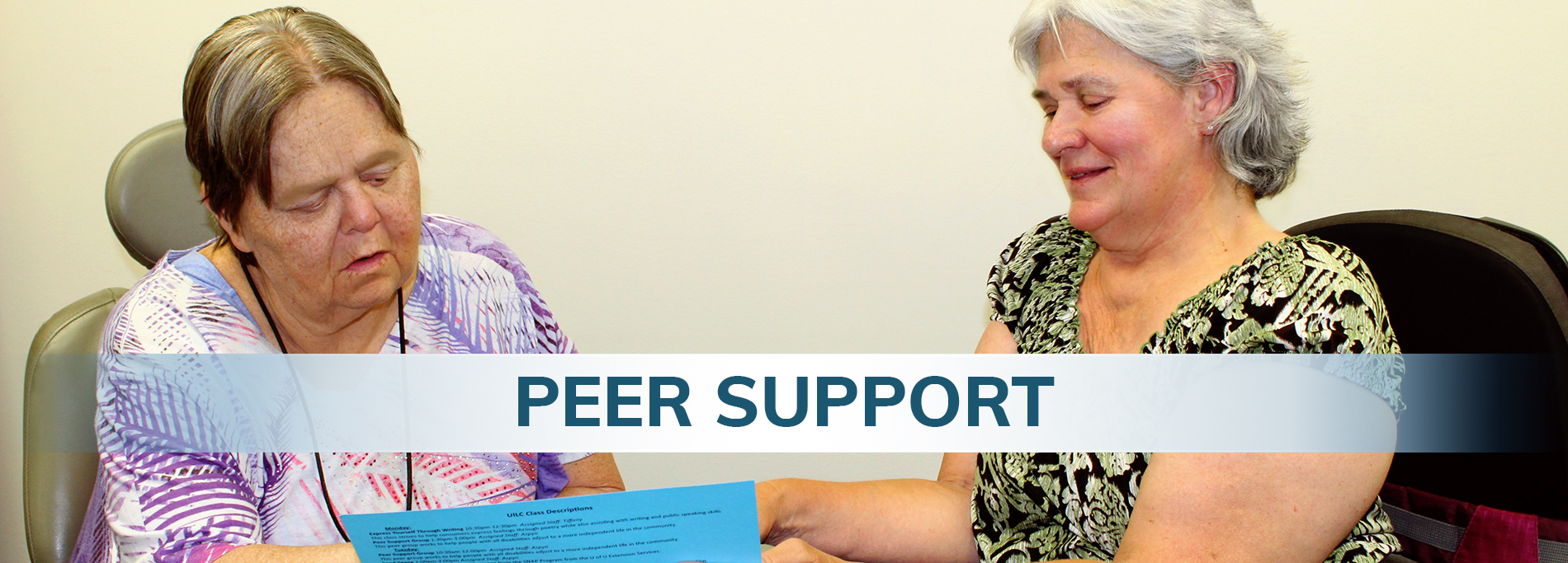 Peer Support - Header